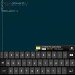 DroidEdit + Hacker's Keyboard